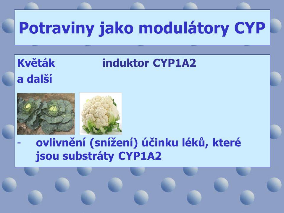 Potraviny jako modulátory CYP Květákinduktor CYP1A2 a další -ovlivnění (snížení) účinku léků, které jsou substráty CYP1A2
