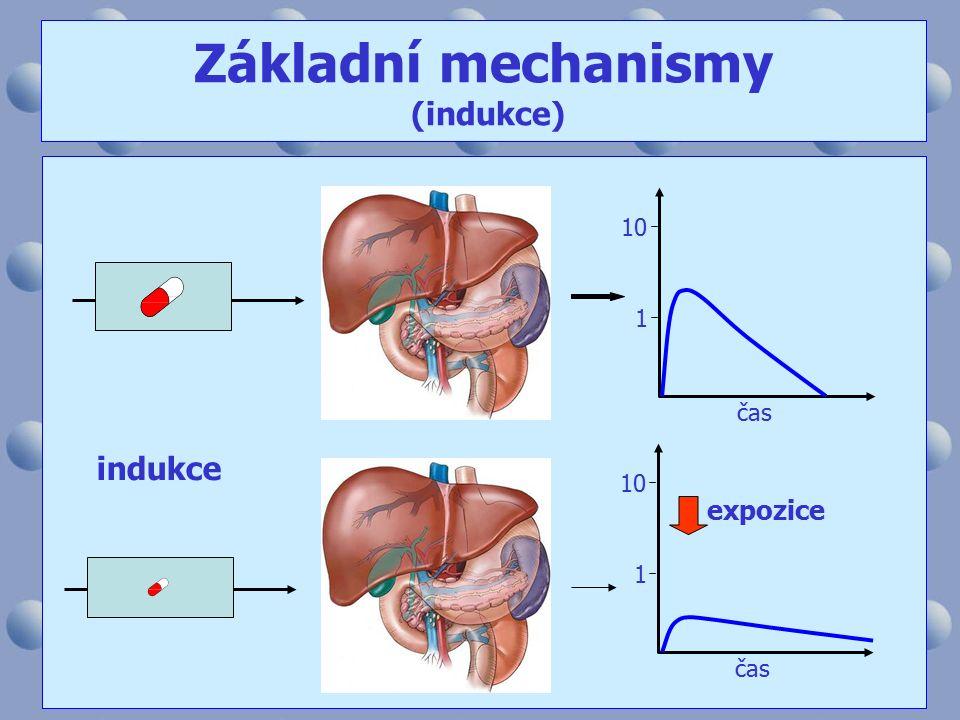 10 1 čas 10 1 indukce expozice Základní mechanismy (indukce)