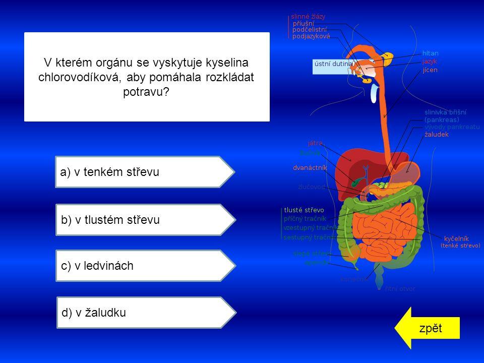 zpět a) v tenkém střevu b) v tlustém střevu c) v ledvinách d) v žaludku V kterém orgánu se vyskytuje kyselina chlorovodíková, aby pomáhala rozkládat potravu