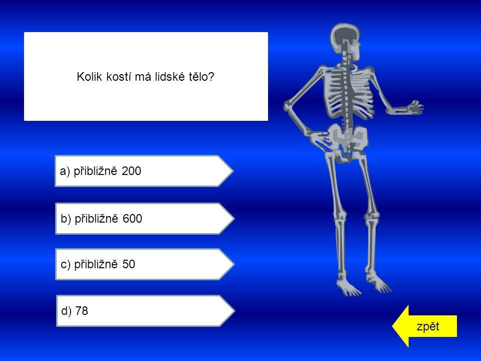 zpět a) přibližně 200 b) přibližně 600 c) přibližně 50 d) 78 Kolik kostí má lidské tělo
