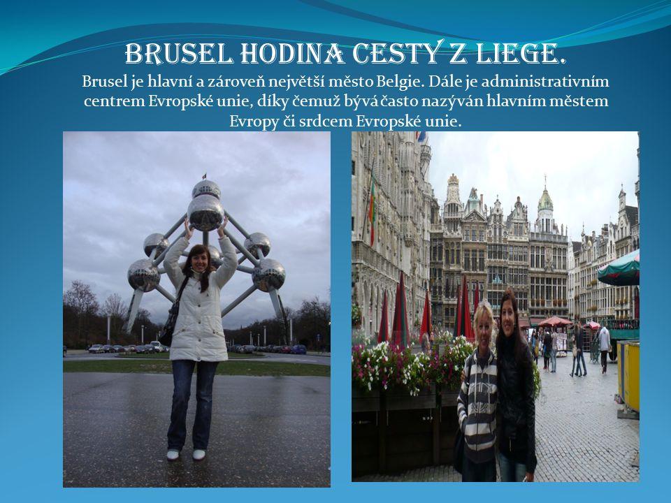 Brusel hodina cesty z Liege. Brusel je hlavní a zároveň největší město Belgie.