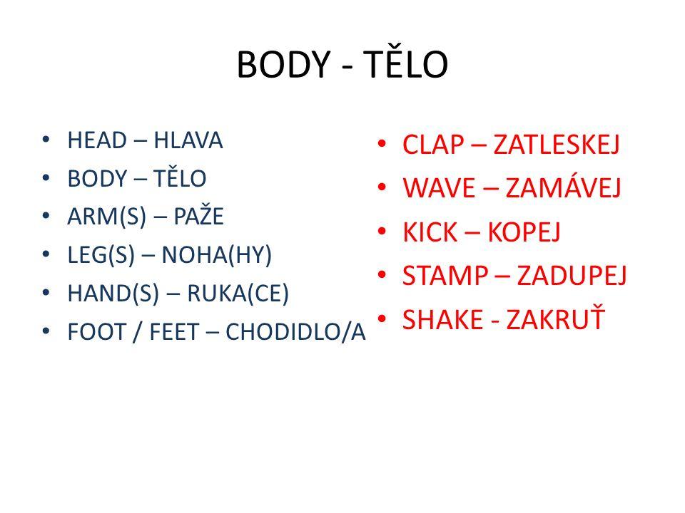 BODY - TĚLO HEAD – HLAVA BODY – TĚLO ARM(S) – PAŽE LEG(S) – NOHA(HY) HAND(S) – RUKA(CE) FOOT / FEET – CHODIDLO/A CLAP – ZATLESKEJ WAVE – ZAMÁVEJ KICK – KOPEJ STAMP – ZADUPEJ SHAKE - ZAKRUŤ