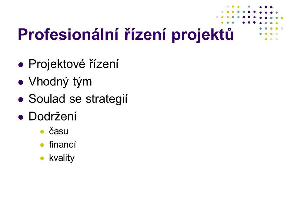 Profesionální řízení projektů Projektové řízení Vhodný tým Soulad se strategií Dodržení času financí kvality