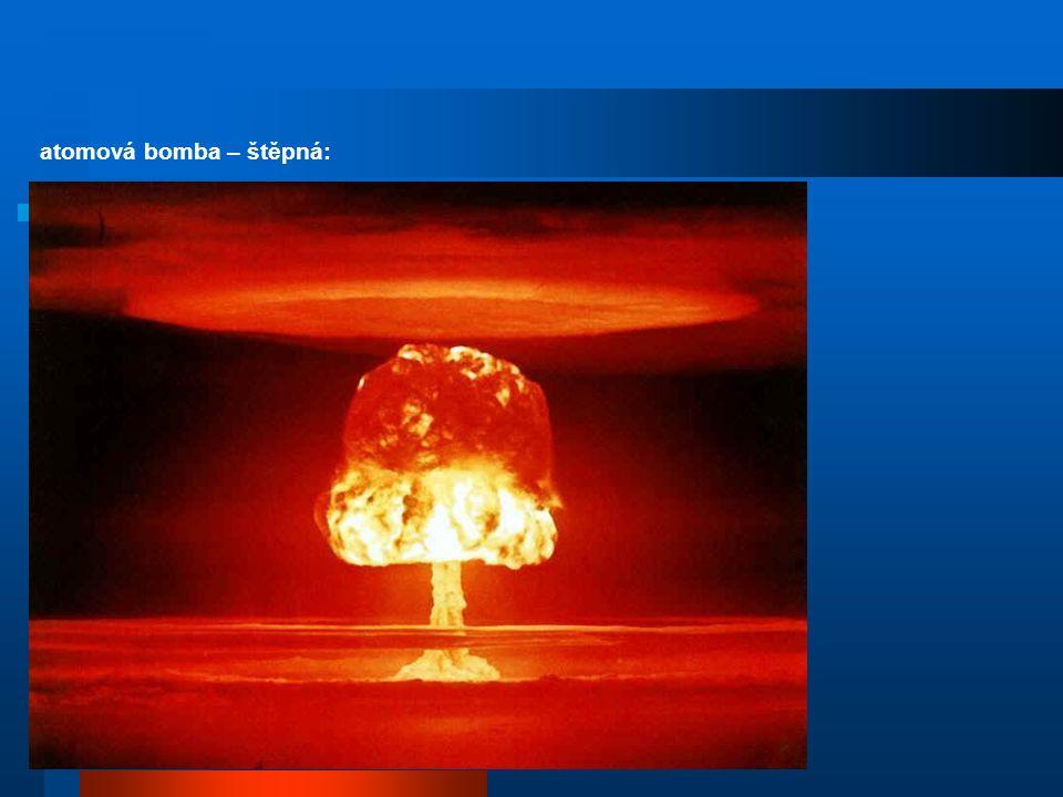 schéma běžné jaderné elektrárny Temelín