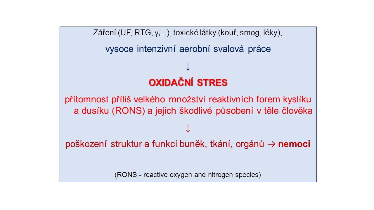 Záření (UF, RTG, γ,..), toxické látky (kouř, smog, léky), vysoce intenzivní aerobní svalová práce ↓ OXIDAČNÍ STRES přítomnost příliš velkého množství reaktivních forem kyslíku a dusíku (RONS) a jejich škodlivé působení v těle člověka ↓ poškození struktur a funkcí buněk, tkání, orgánů → nemoci (RONS - reactive oxygen and nitrogen species)