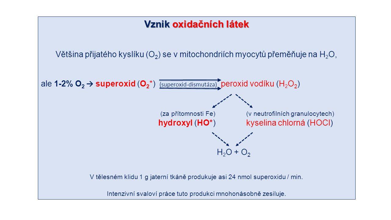 Vznik oxidačních látek Většina přijatého kyslíku (O 2 ) se v mitochondriích myocytů přeměňuje na H 2 O, ale 1-2% O 2 → superoxid (O 2 *) (superoxid-dismutáza) peroxid vodíku (H 2 O 2 ) (za přítomnosti Fe)(v neutrofilních granulocytech) hydroxyl (HO*)kyselina chlorná (HOCl) H 2 O + O 2 V tělesném klidu 1 g jaterní tkáně produkuje asi 24 nmol superoxidu / min.