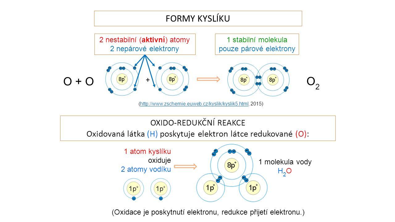 + FORMY KYSLÍKU 1 stabilní molekula pouze párové elektrony 2 nestabilní (aktivní) atomy 2 nepárové elektrony (http://www.zschemie.euweb.cz/kyslik/kyslik5.html, 2015)http://www.zschemie.euweb.cz/kyslik/kyslik5.html OXIDO-REDUKČNÍ REAKCE Oxidovaná látka (H) poskytuje elektron látce redukované (O): 1 atom kyslíku oxiduje 2 atomy vodíku 1 molekula vody H 2 O O + O O2O2 (Oxidace je poskytnutí elektronu, redukce přijetí elektronu.)