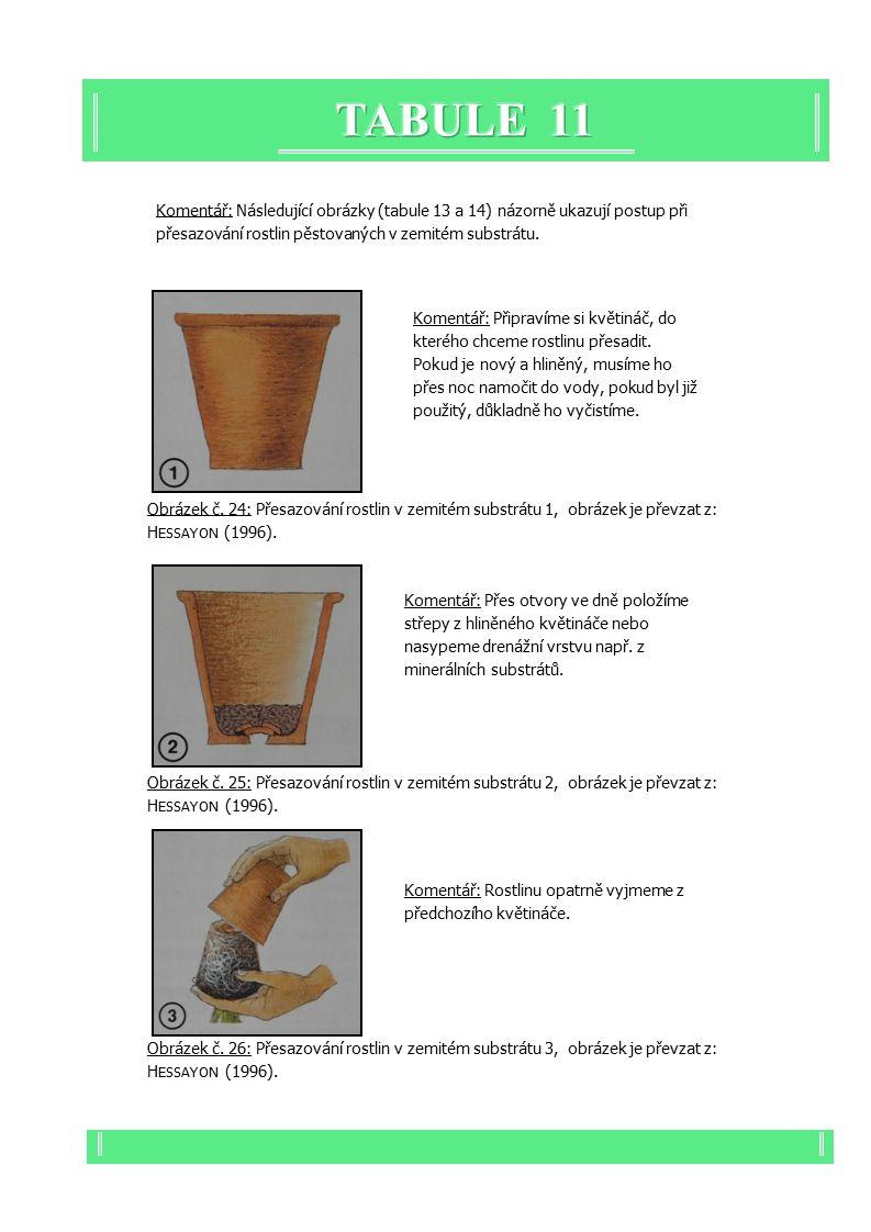 Komentář: Následující obrázky (tabule 13 a 14) názorně ukazují postup při přesazování rostlin pěstovaných v zemitém substrátu.