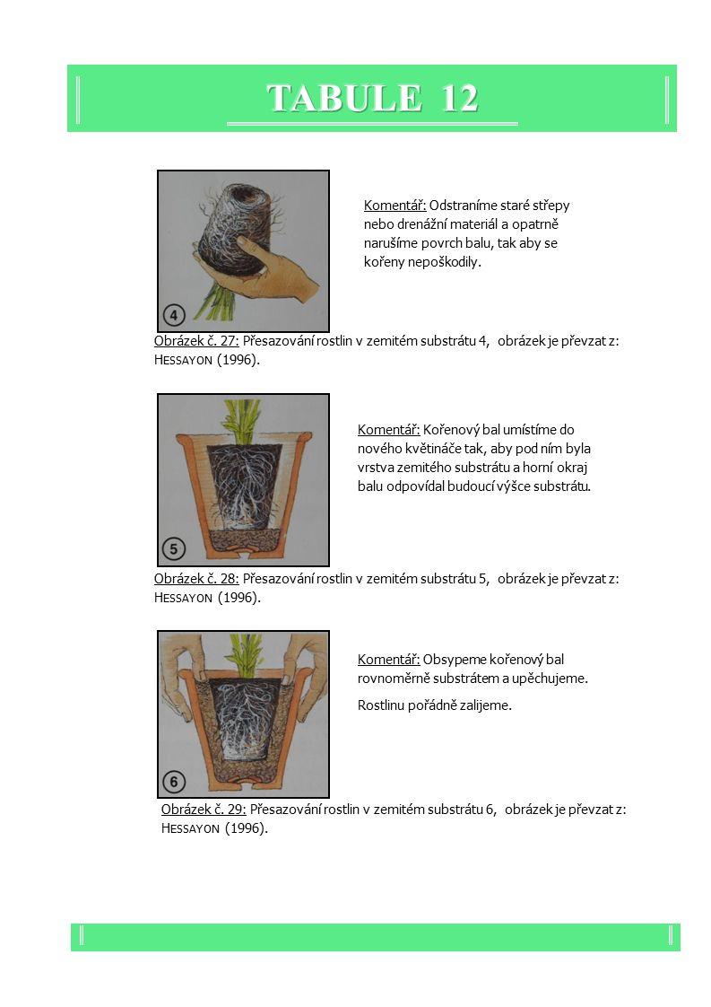 Obrázek č. 28: Přesazování rostlin v zemitém substrátu 5, obrázek je převzat z: H ESSAYON (1996).