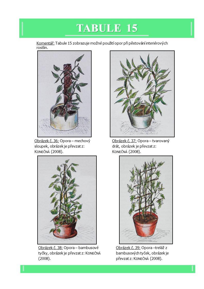 Komentář: Tabule 15 zobrazuje možné použití opor při pěstování interiérových rostlin.
