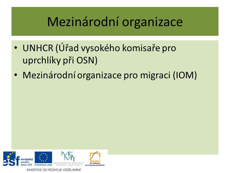 Mezinárodní organizace UNHCR (Úřad vysokého komisaře pro uprchlíky při OSN) Mezinárodní organizace pro migraci (IOM)