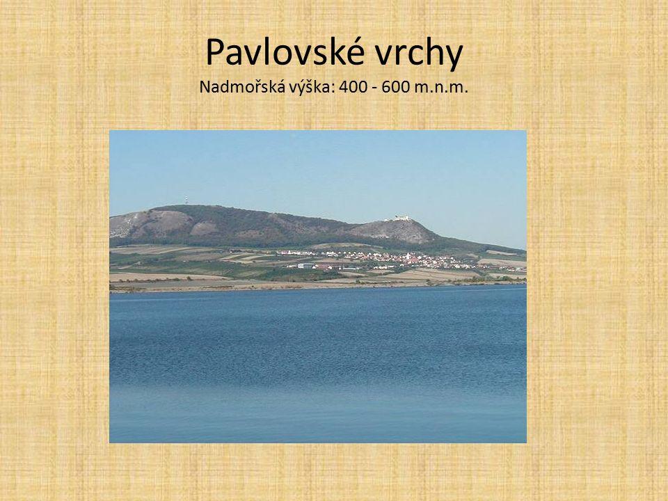 Pavlovské vrchy Nadmořská výška: 400 - 600 m.n.m.