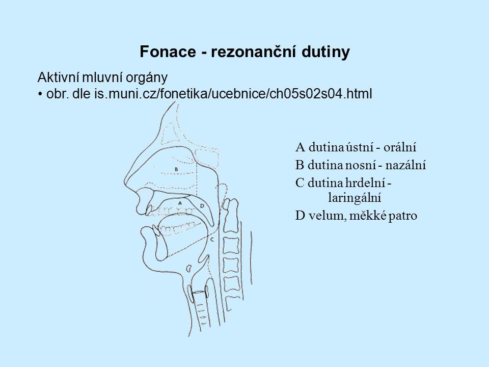 Fonace - rezonanční dutiny A dutina ústní - orální B dutina nosní - nazální C dutina hrdelní - laringální D velum, měkké patro Aktivní mluvní orgány obr.