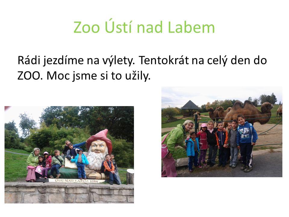 Zoo Ústí nad Labem Rádi jezdíme na výlety. Tentokrát na celý den do ZOO. Moc jsme si to užily.