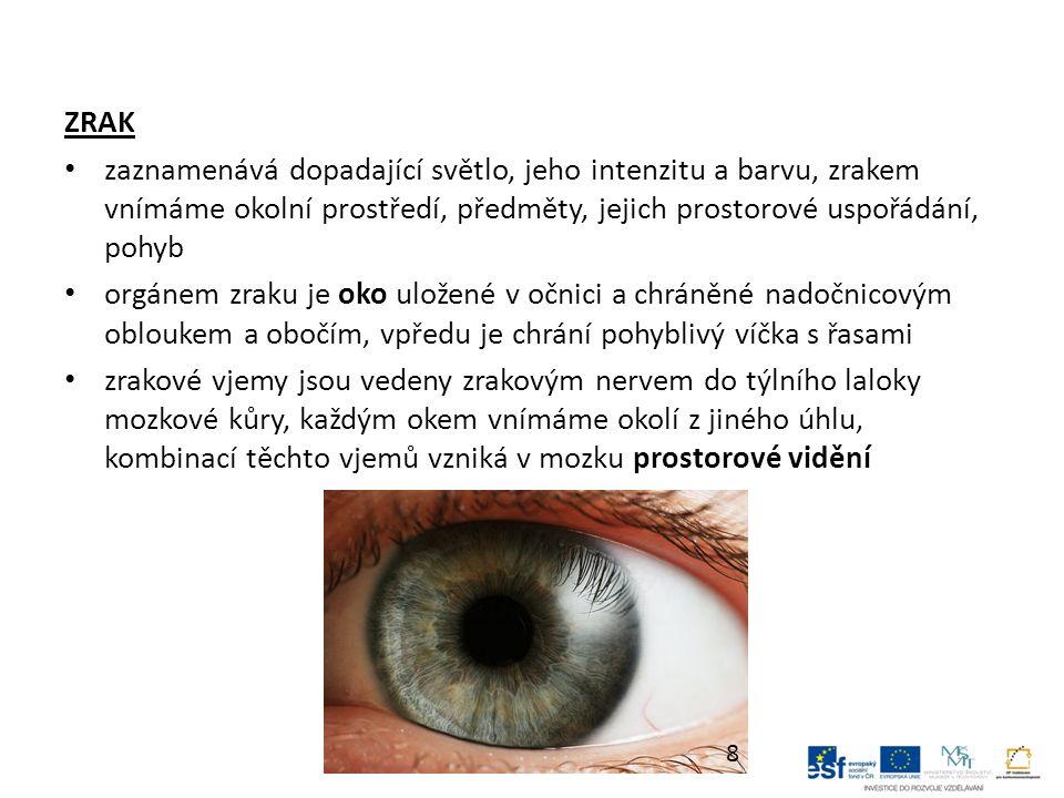 ZRAK zaznamenává dopadající světlo, jeho intenzitu a barvu, zrakem vnímáme okolní prostředí, předměty, jejich prostorové uspořádání, pohyb orgánem zraku je oko uložené v očnici a chráněné nadočnicovým obloukem a obočím, vpředu je chrání pohyblivý víčka s řasami zrakové vjemy jsou vedeny zrakovým nervem do týlního laloky mozkové kůry, každým okem vnímáme okolí z jiného úhlu, kombinací těchto vjemů vzniká v mozku prostorové vidění 8