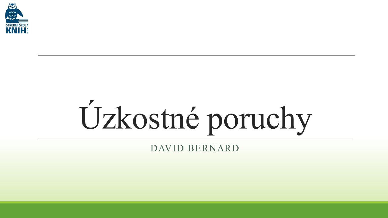 Úzkostné poruchy DAVID BERNARD