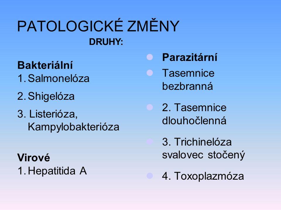 PATOLOGICKÉ ZMĚNY Parazitární Tasemnice bezbranná 2.
