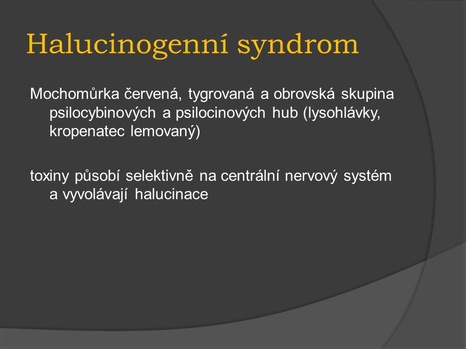 Halucinogenní syndrom Mochomůrka červená, tygrovaná a obrovská skupina psilocybinových a psilocinových hub (lysohlávky, kropenatec lemovaný) toxiny působí selektivně na centrální nervový systém a vyvolávají halucinace