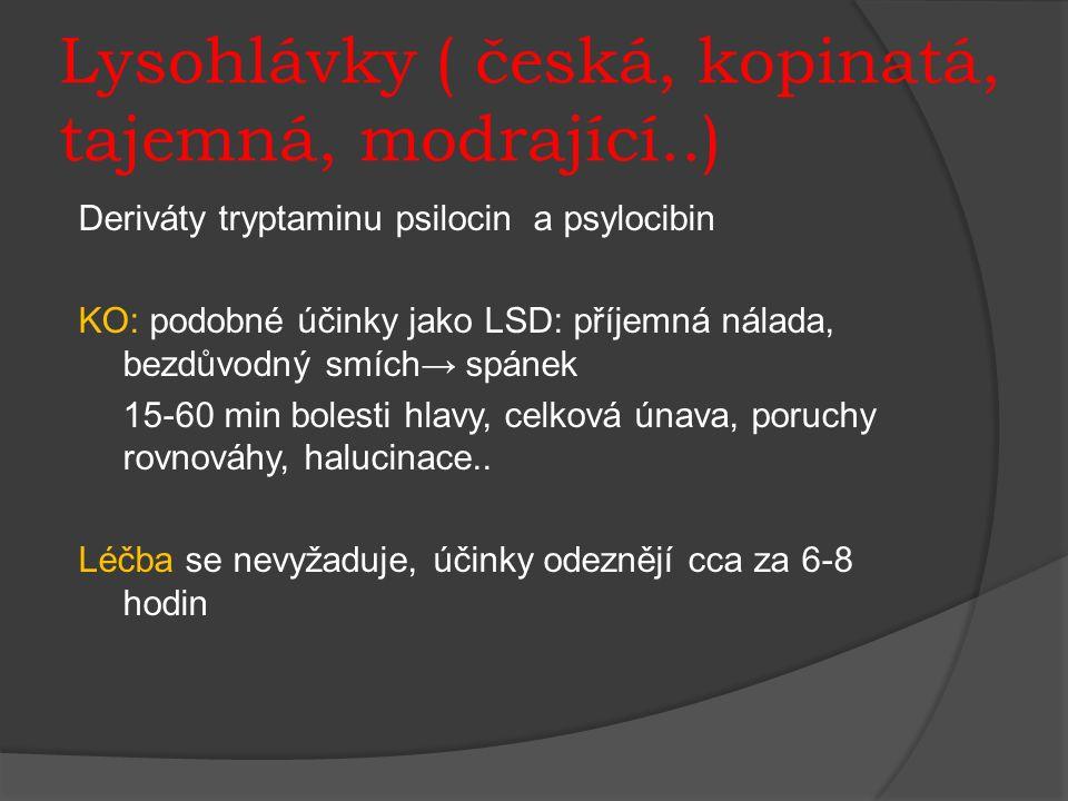 Lysohlávky ( česká, kopinatá, tajemná, modrající..) Deriváty tryptaminu psilocin a psylocibin KO: podobné účinky jako LSD: příjemná nálada, bezdůvodný smích→ spánek 15-60 min bolesti hlavy, celková únava, poruchy rovnováhy, halucinace..