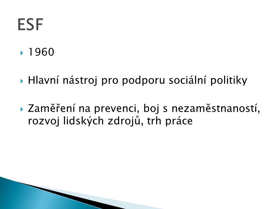  1960  Hlavní nástroj pro podporu sociální politiky  Zaměření na prevenci, boj s nezaměstnaností, rozvoj lidských zdrojů, trh práce