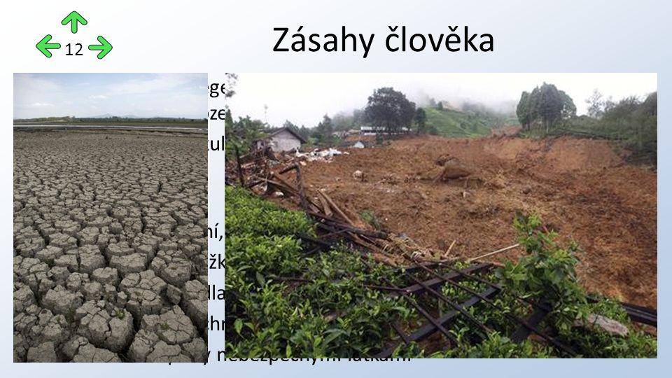 změna původní vegetace, odlesnění, spásání vegetace (zrychlená vodní a větrná eroze) vysazování monokultur – podpora podzolizace a jednostranného vyčerpání půdy odvodňování chemizace (hnojení, pesticidy) zhutňování půd těžkou technikou zábor půdy pro sídla, komunikace, těžbu nerostných surovin apod.