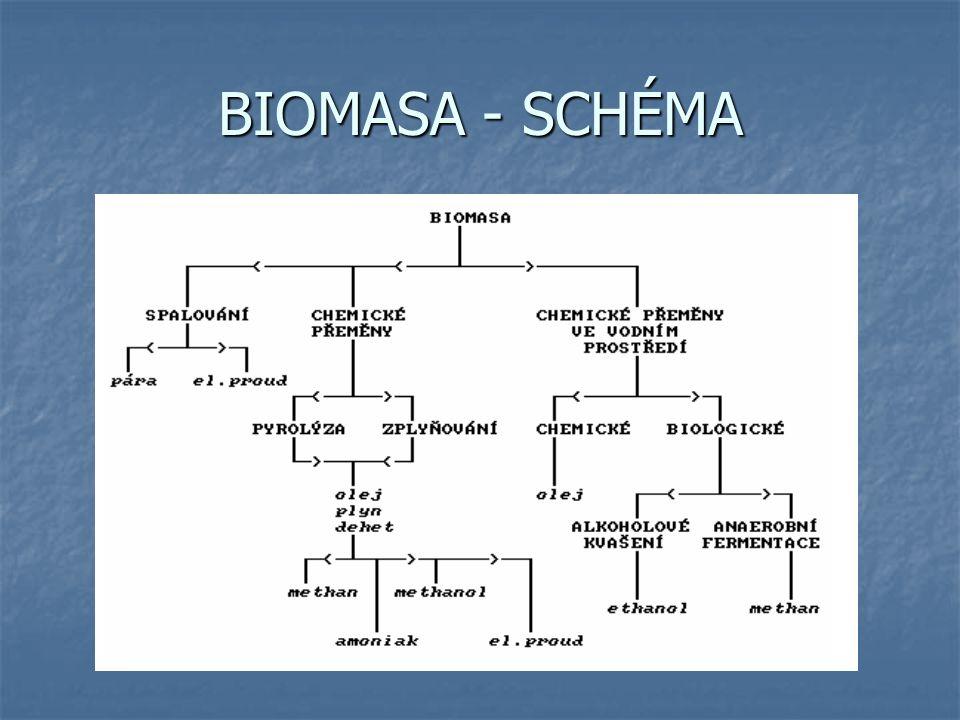 BIOMASA - SCHÉMA
