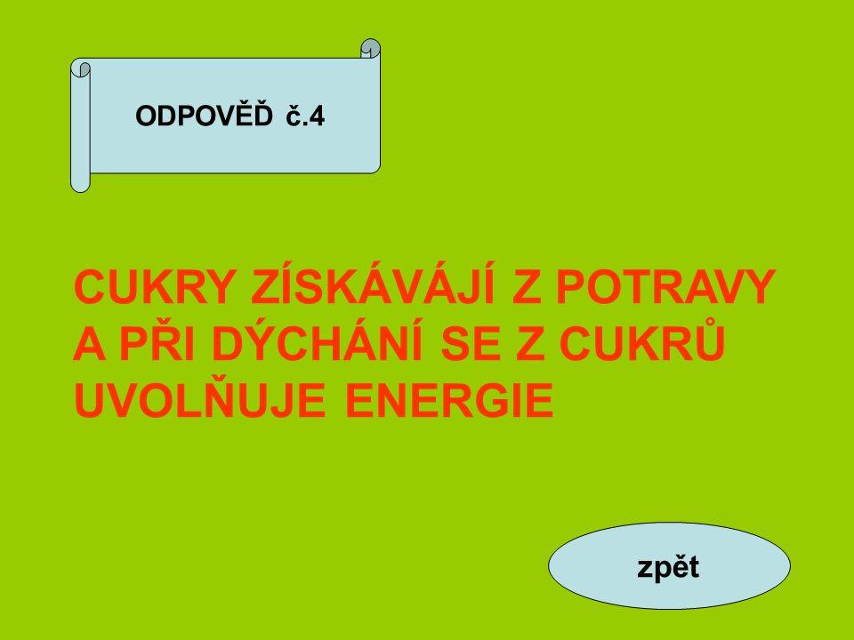 ODPOVĚĎ č.4 CUKRY ZÍSKÁVÁJÍ Z POTRAVY A PŘI DÝCHÁNÍ SE Z CUKRŮ UVOLŇUJE ENERGIE zpět
