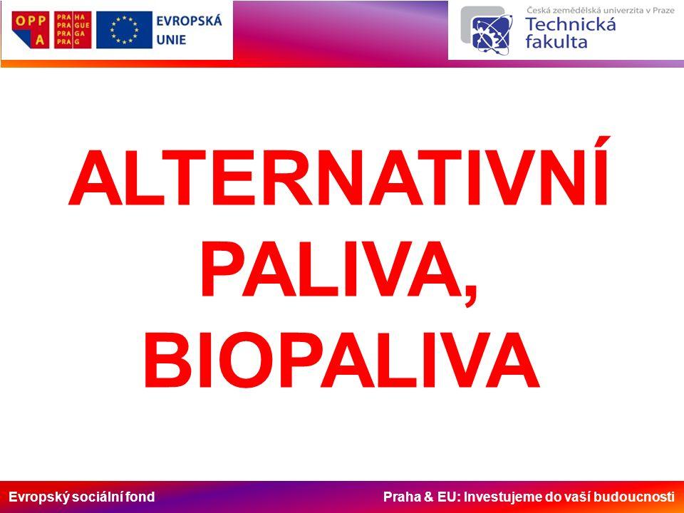 Evropský sociální fond Praha & EU: Investujeme do vaší budoucnosti ALTERNATIVNÍ PALIVA, BIOPALIVA