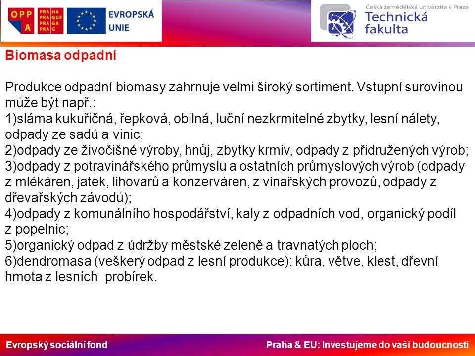 Evropský sociální fond Praha & EU: Investujeme do vaší budoucnosti Biomasa odpadní Produkce odpadní biomasy zahrnuje velmi široký sortiment. Vstupní s