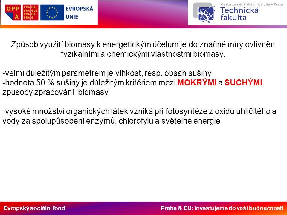 Evropský sociální fond Praha & EU: Investujeme do vaší budoucnosti Způsob využití biomasy k energetickým účelům je do značné míry ovlivněn fyzikálními
