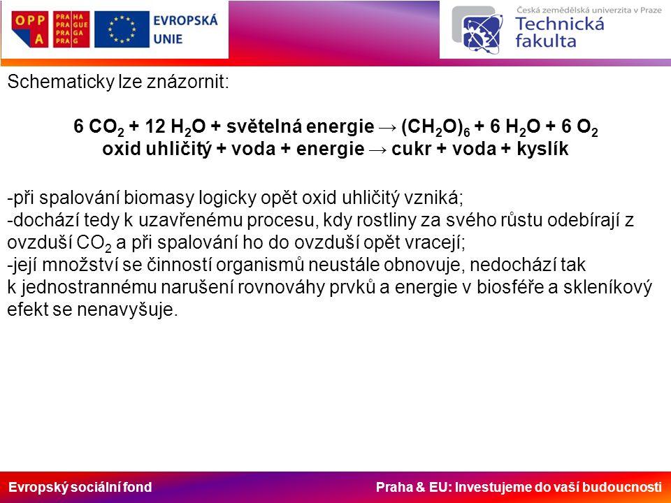 Evropský sociální fond Praha & EU: Investujeme do vaší budoucnosti Schematicky lze znázornit: 6 CO 2 + 12 H 2 O + světelná energie → (CH 2 O) 6 + 6 H