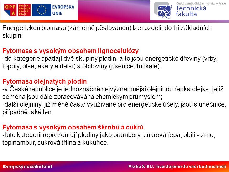 Evropský sociální fond Praha & EU: Investujeme do vaší budoucnosti Energetickou biomasu (záměrně pěstovanou) lze rozdělit do tří základních skupin: Fy
