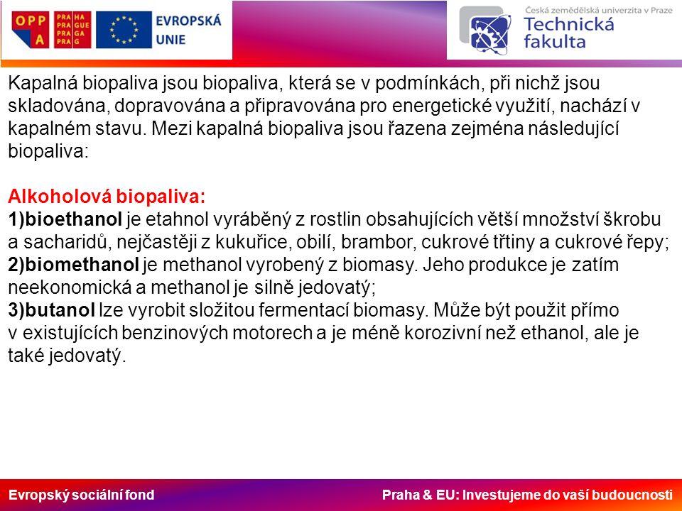 Evropský sociální fond Praha & EU: Investujeme do vaší budoucnosti Kapalná biopaliva jsou biopaliva, která se v podmínkách, při nichž jsou skladována,