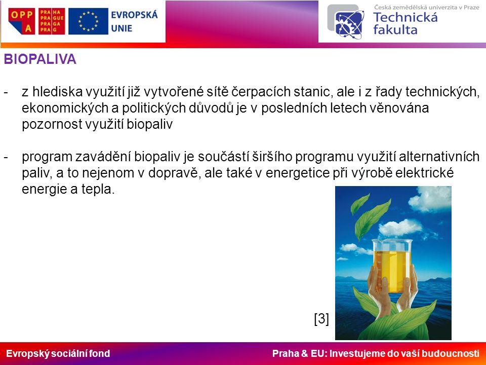 Evropský sociální fond Praha & EU: Investujeme do vaší budoucnosti BIOPALIVA -z hlediska využití již vytvořené sítě čerpacích stanic, ale i z řady tec