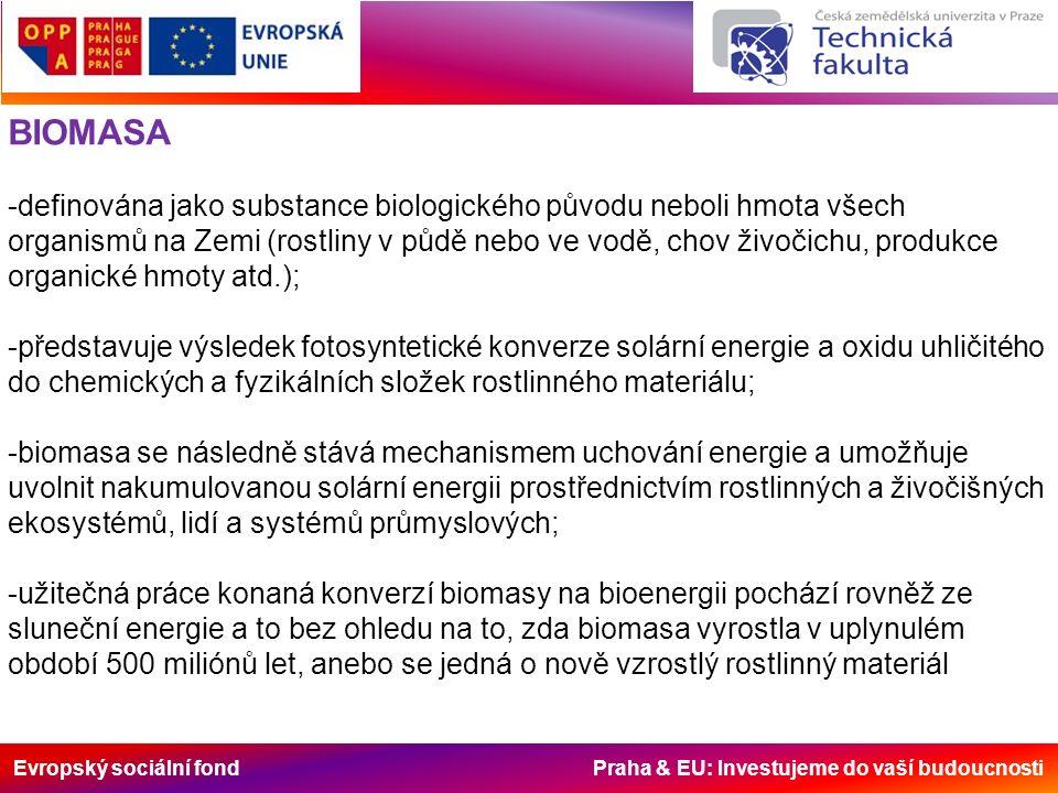 Evropský sociální fond Praha & EU: Investujeme do vaší budoucnosti BIOMASA -definována jako substance biologického původu neboli hmota všech organismů