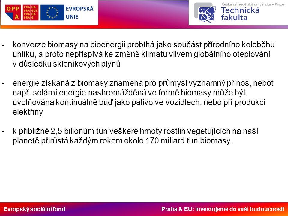 Evropský sociální fond Praha & EU: Investujeme do vaší budoucnosti -konverze biomasy na bioenergii probíhá jako součást přírodního koloběhu uhlíku, a