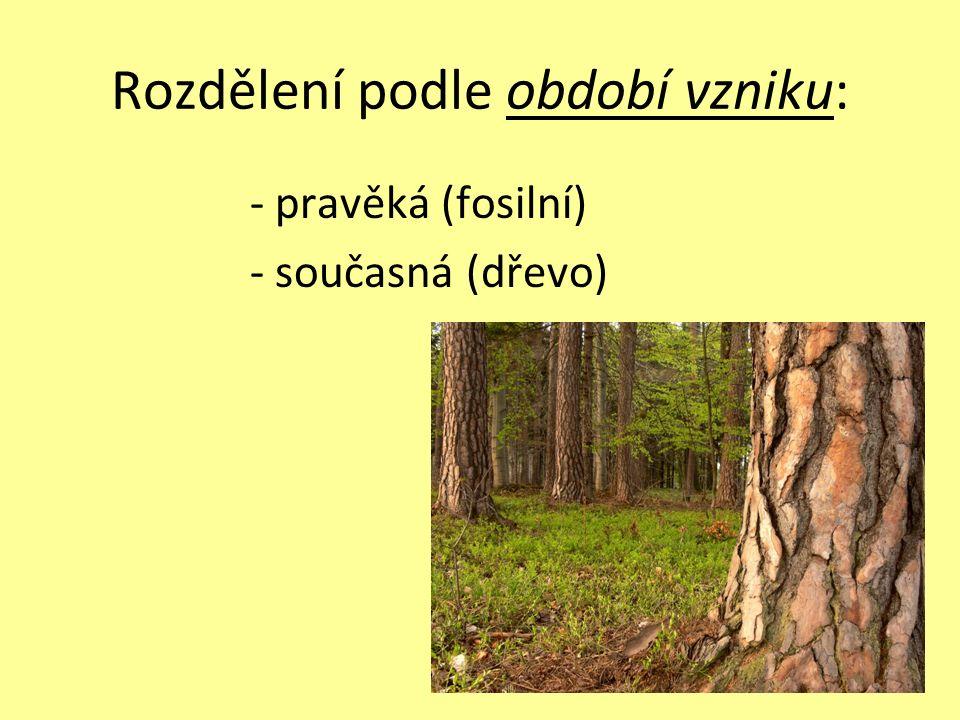 Rozdělení podle období vzniku: - pravěká (fosilní) - současná (dřevo)