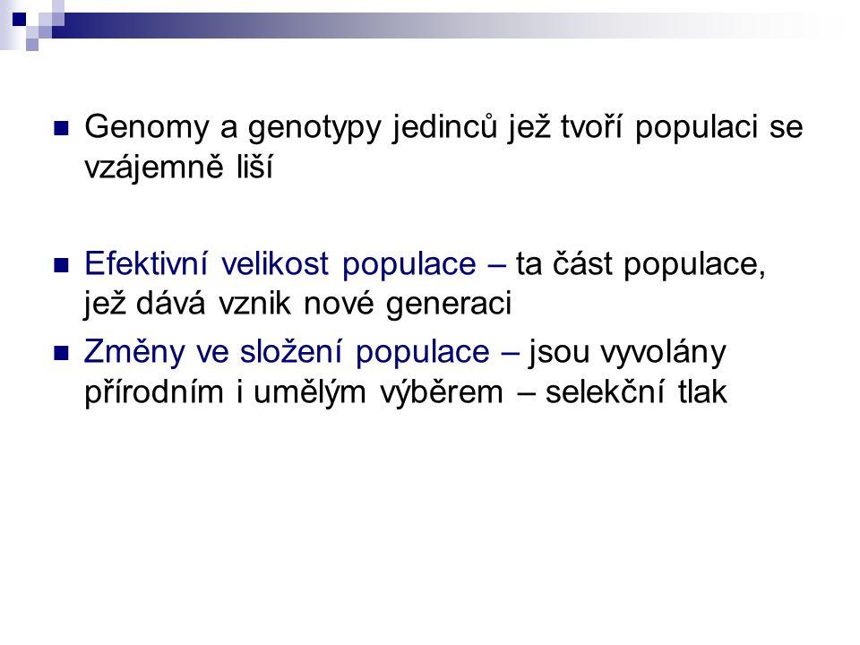 Genomy a genotypy jedinců jež tvoří populaci se vzájemně liší Efektivní velikost populace – ta část populace, jež dává vznik nové generaci Změny ve složení populace – jsou vyvolány přírodním i umělým výběrem – selekční tlak