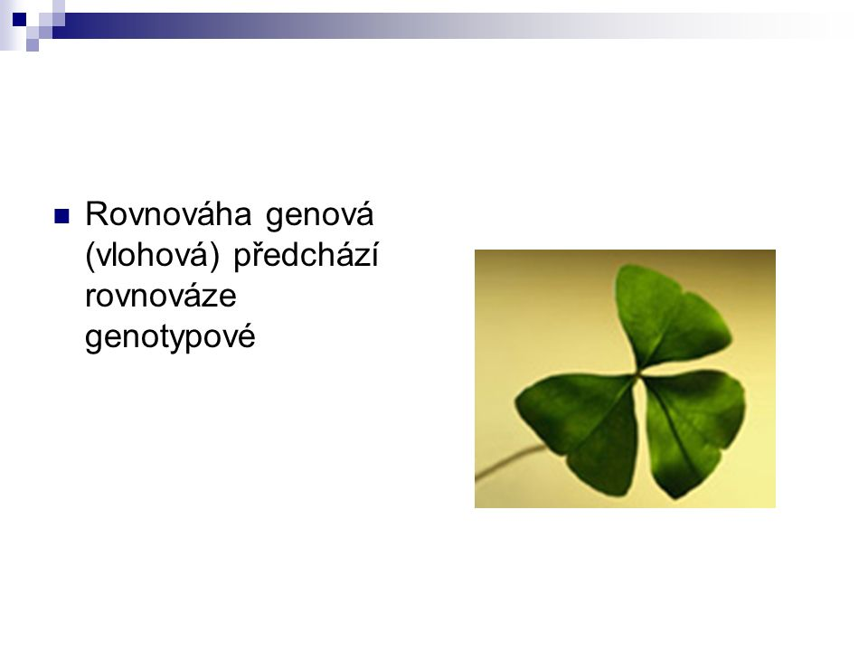 Rovnováha genová (vlohová) předchází rovnováze genotypové