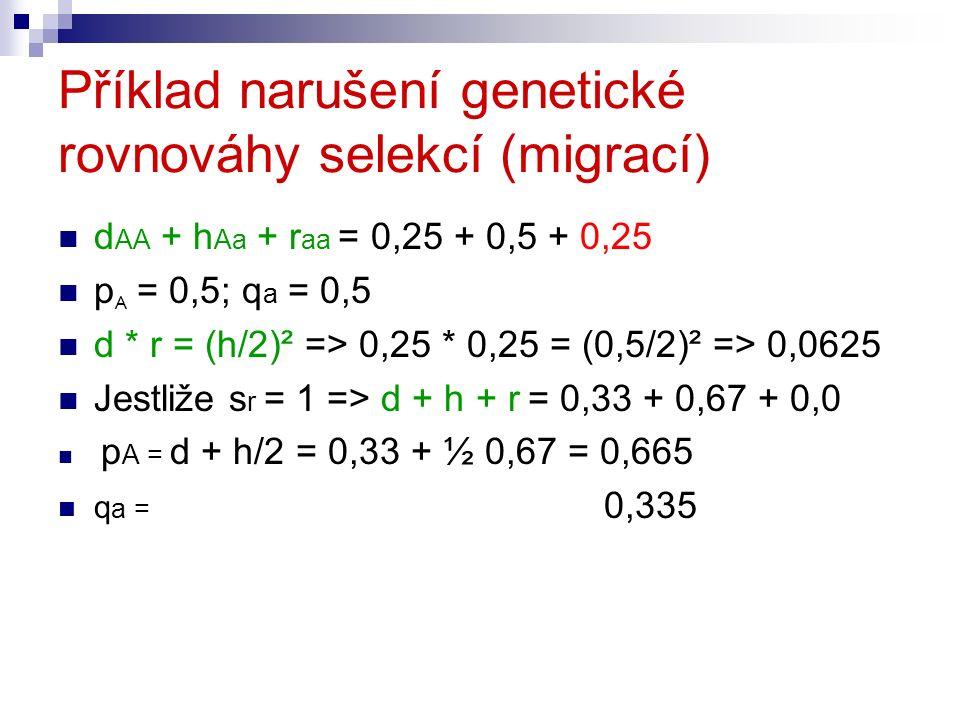 Příklad narušení genetické rovnováhy selekcí (migrací) d AA + h Aa + r aa = 0,25 + 0,5 + 0,25 p A = 0,5; q a = 0,5 d * r = (h/2)² => 0,25 * 0,25 = (0,5/2)² => 0,0625 Jestliže s r = 1 => d + h + r = 0,33 + 0,67 + 0,0 p A = d + h/2 = 0,33 + ½ 0,67 = 0,665 q a = 0,335