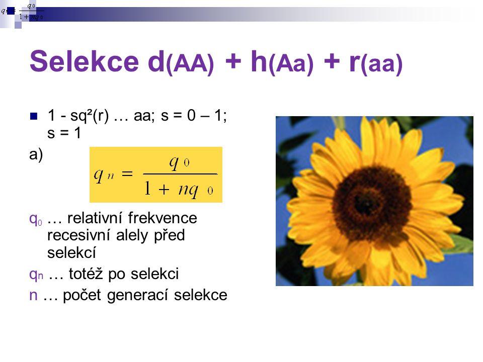 Selekce d (AA) + h (Aa) + r (aa) 1 - sq²(r) … aa; s = 0 – 1; s = 1 a) q 0 … relativní frekvence recesivní alely před selekcí q n … totéž po selekci n … počet generací selekce