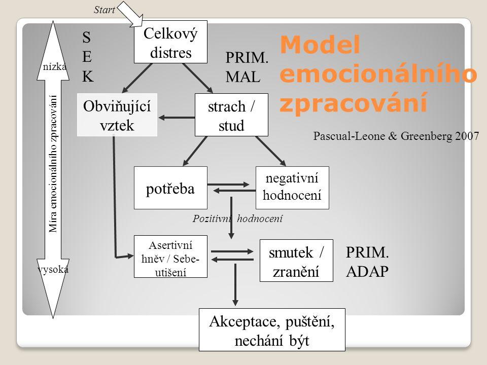 Model emocionálního zpracování Obviňující vztek Akceptace, puštění, nechání být smutek / zranění Celkový distres negativní hodnocení Asertivní hněv / Sebe- utišení strach / stud potřeba Start Míra emocionálního zpracování nízká vysoká Pozitivní hodnocení Pascual-Leone & Greenberg 2007 SEKSEK PRIM.