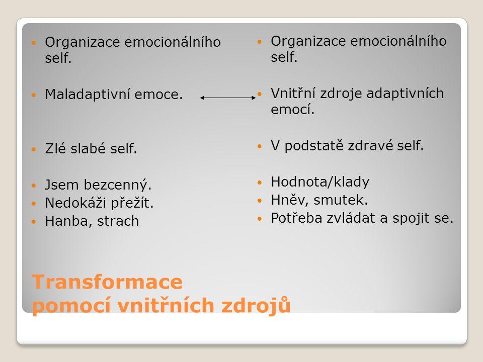 Transformace pomocí vnitřních zdrojů Organizace emocionálního self.