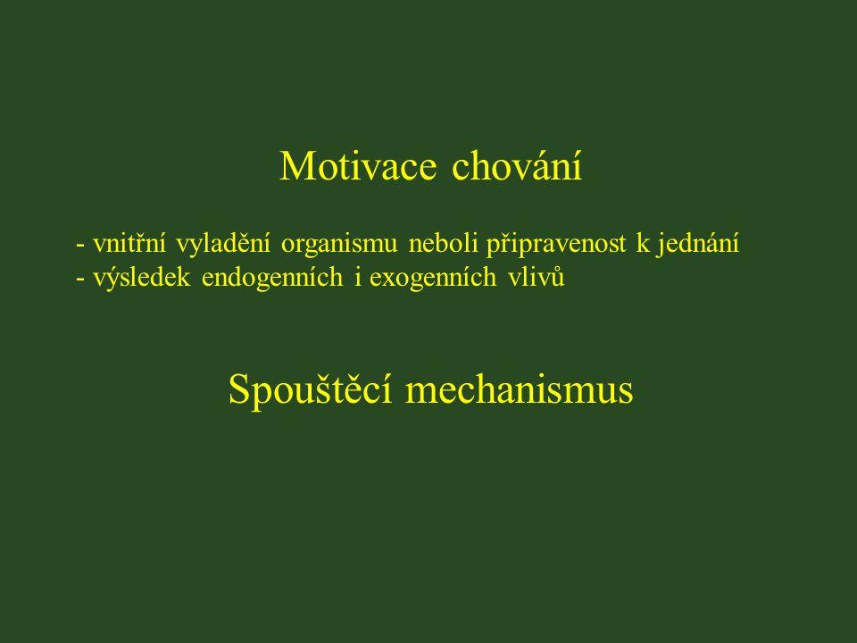 Motivace chování - vnitřní vyladění organismu neboli připravenost k jednání - výsledek endogenních i exogenních vlivů Spouštěcí mechanismus