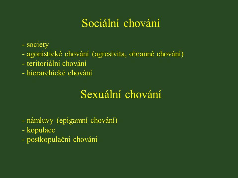 Sociální chování - society - agonistické chování (agresivita, obranné chování) - teritoriální chování - hierarchické chování Sexuální chování - námluvy (epigamní chování) - kopulace - postkopulační chování