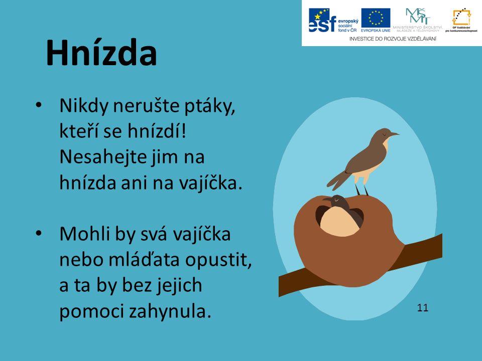 Nikdy nerušte ptáky, kteří se hnízdí! Nesahejte jim na hnízda ani na vajíčka. Mohli by svá vajíčka nebo mláďata opustit, a ta by bez jejich pomoci zah