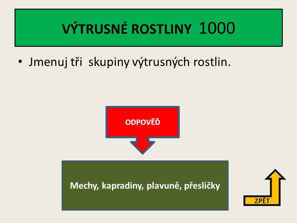 ČELEDI ROSTLIN 5000 Vysvětli pojem – zelené hnojivo.
