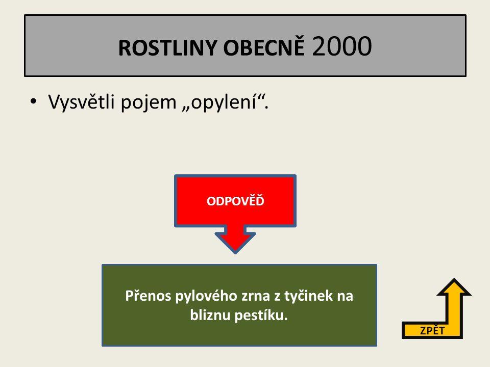 ROSTLINY OBECNĚ 1000 Popiš vnější stavbu listu. ZPĚT ODPOVĚĎ řapík, čepel, žilnatina