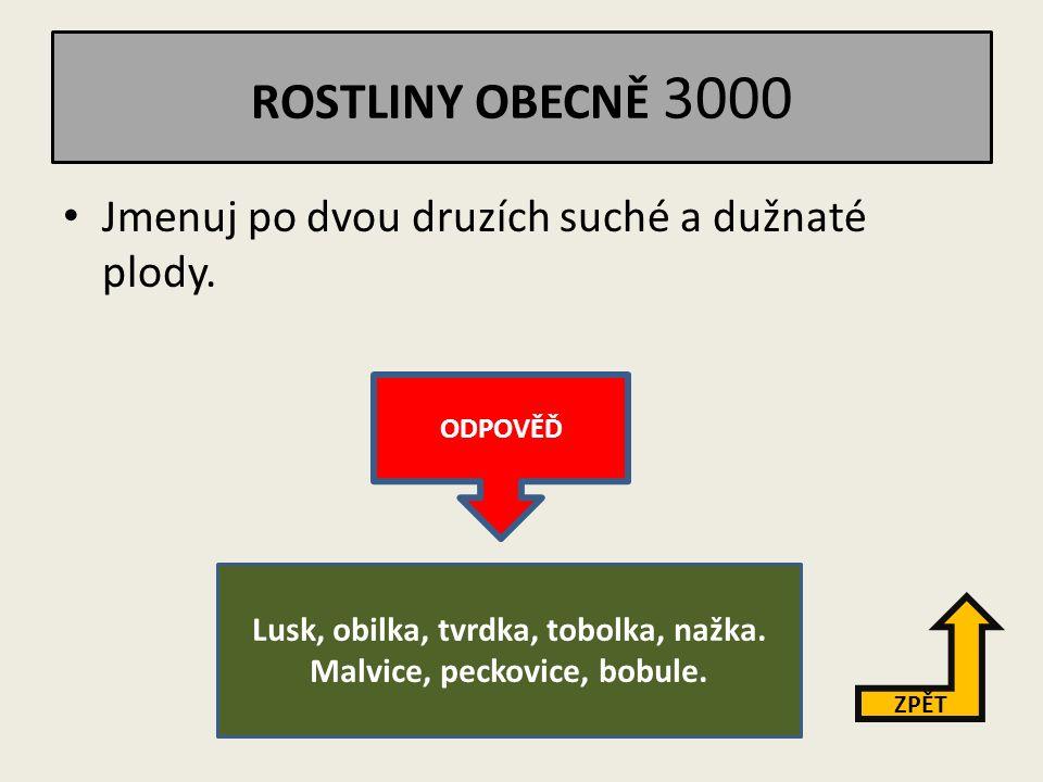 """ROSTLINY OBECNĚ 2000 Vysvětli pojem """"opylení ."""