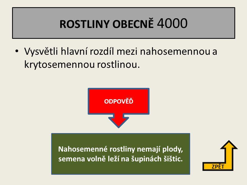 ROSTLINY OBECNĚ 3000 Jmenuj po dvou druzích suché a dužnaté plody.